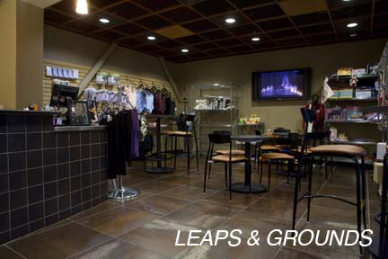 Leaps & Grounds